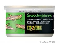Exo Terra Grashoppers XL 34 Gram