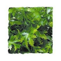 Zoo Med Kunst Planten Small Cannabis 36 cm